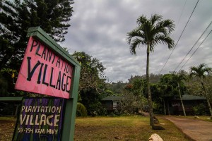 Plantation-village-sign-north-shore
